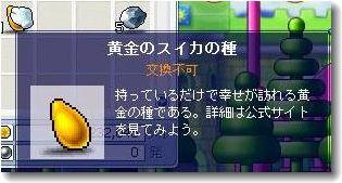 0808080001.jpg