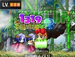 Maple0492.jpg