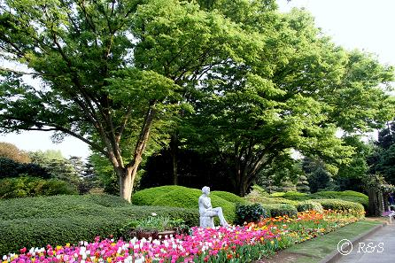 神代植物公園-全体9IMG_3337