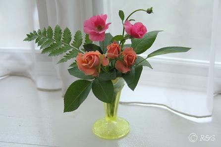 花瓶にバラ20080523-2IMG_1430