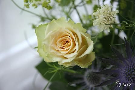 花瓶の花5IMG_8651