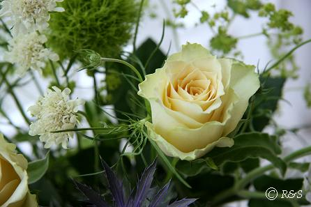 花瓶の花6IMG_8652