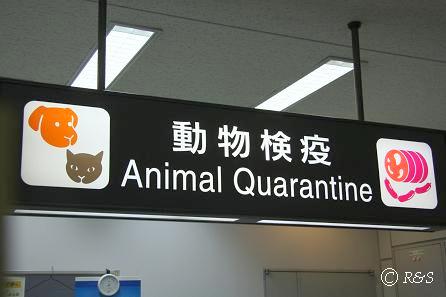 xi成田の動物検疫1IMG_7354