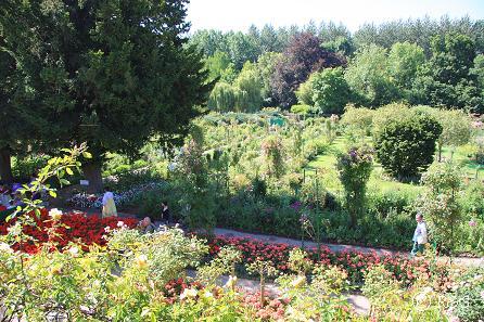 iモネの庭14IMG_9958