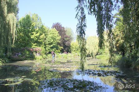 kモネの池16IMG_9910