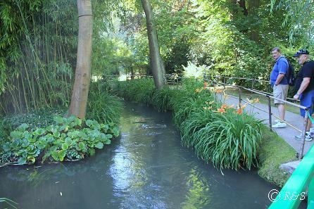 jモネの池の周り2IMG_9859