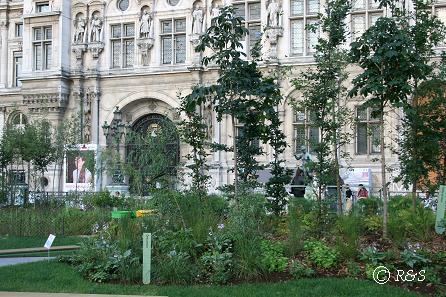 パリ市庁舎2IMG_0287