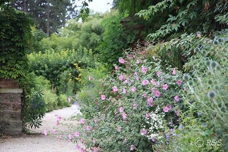 hバガテル公園ー庭園14IMG_2861