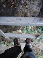 ワイルドターキーゴージの階段
