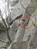 湯河原あもんブライダル岩が落ちそう02