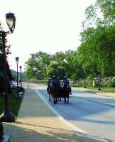 フィラデルフィア美術館 07/11 b 騎馬警官