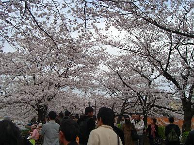 上野公園。