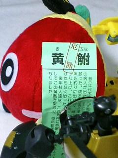 2008_05_30_2.jpg