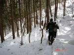 林の中を歩く 058