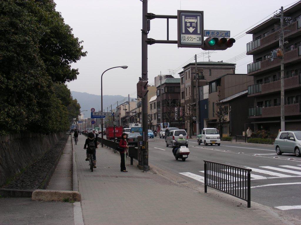 御所桃、宇多野桜、太秦 080