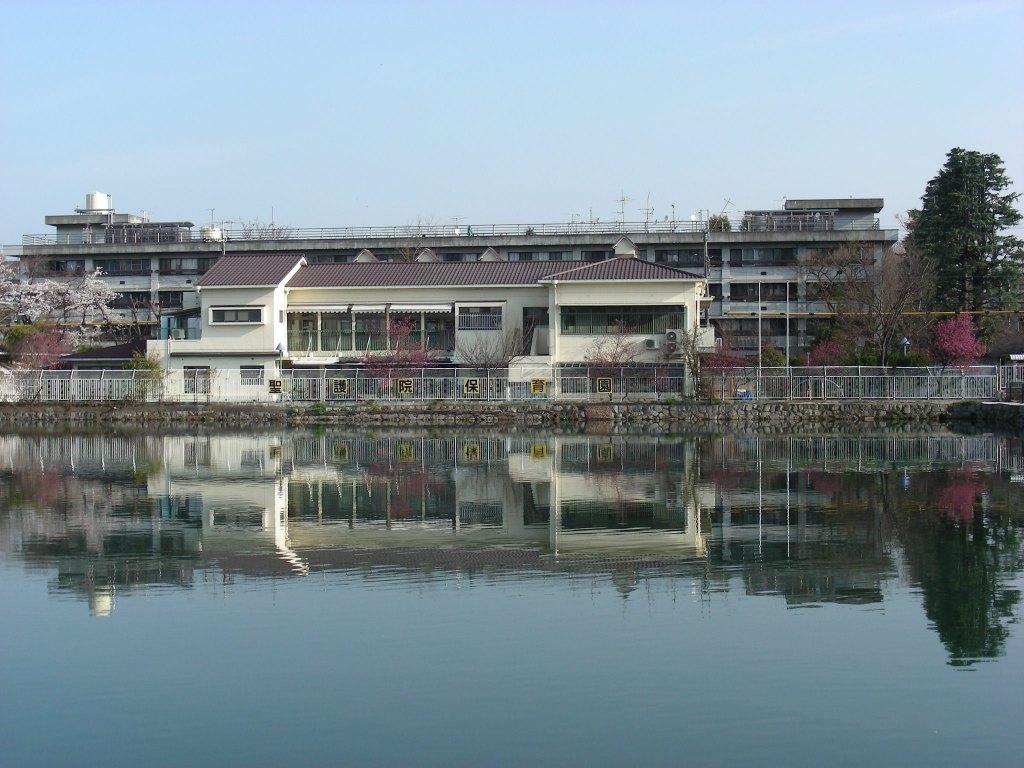 疎水・松ヶ崎・船岡・鳴滝桜 036