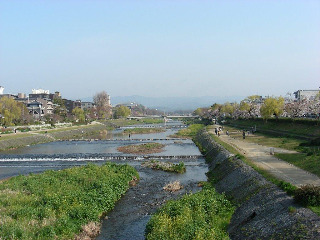 疎水・松ヶ崎・船岡・鳴滝桜 066