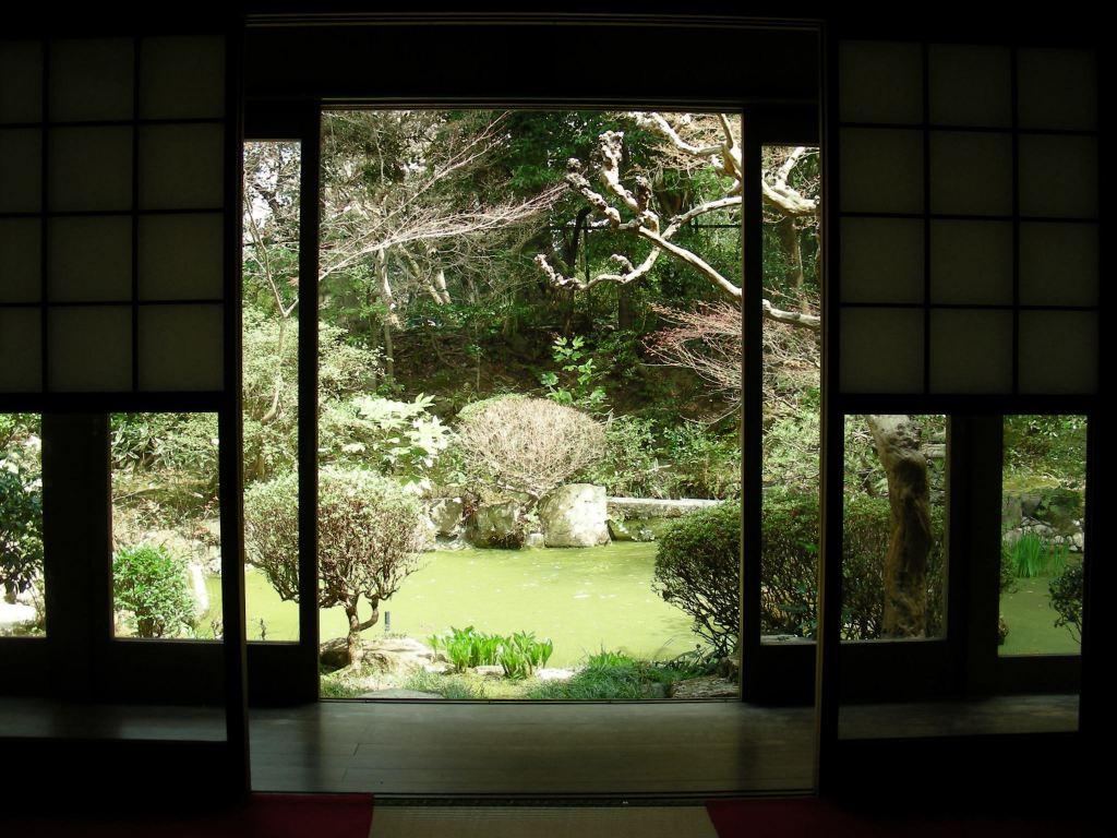 桜・円山、真如、哲学 088