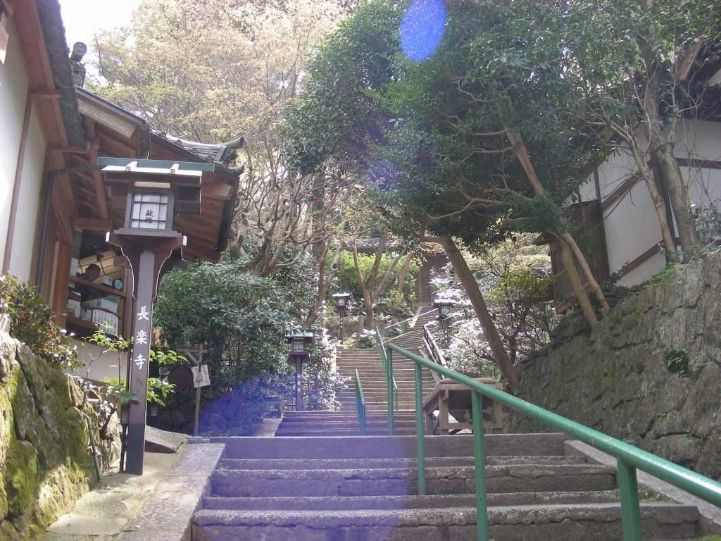 桜・円山、真如、哲学 068