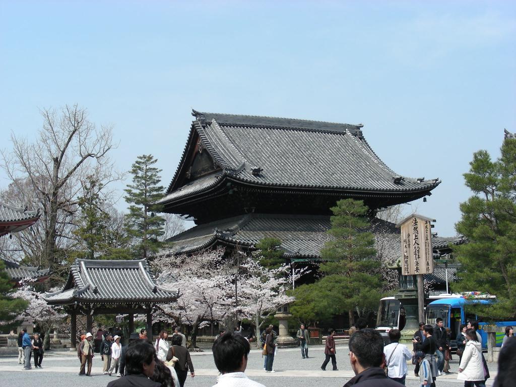 桜・円山、真如、哲学 106