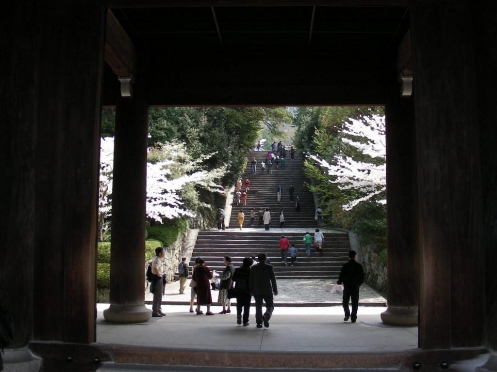 桜・円山、真如、哲学 116