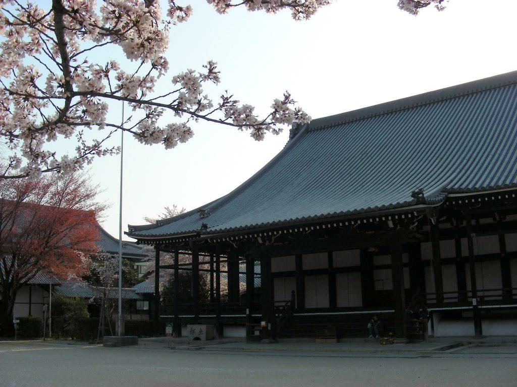 桜・円山、真如、哲学 301
