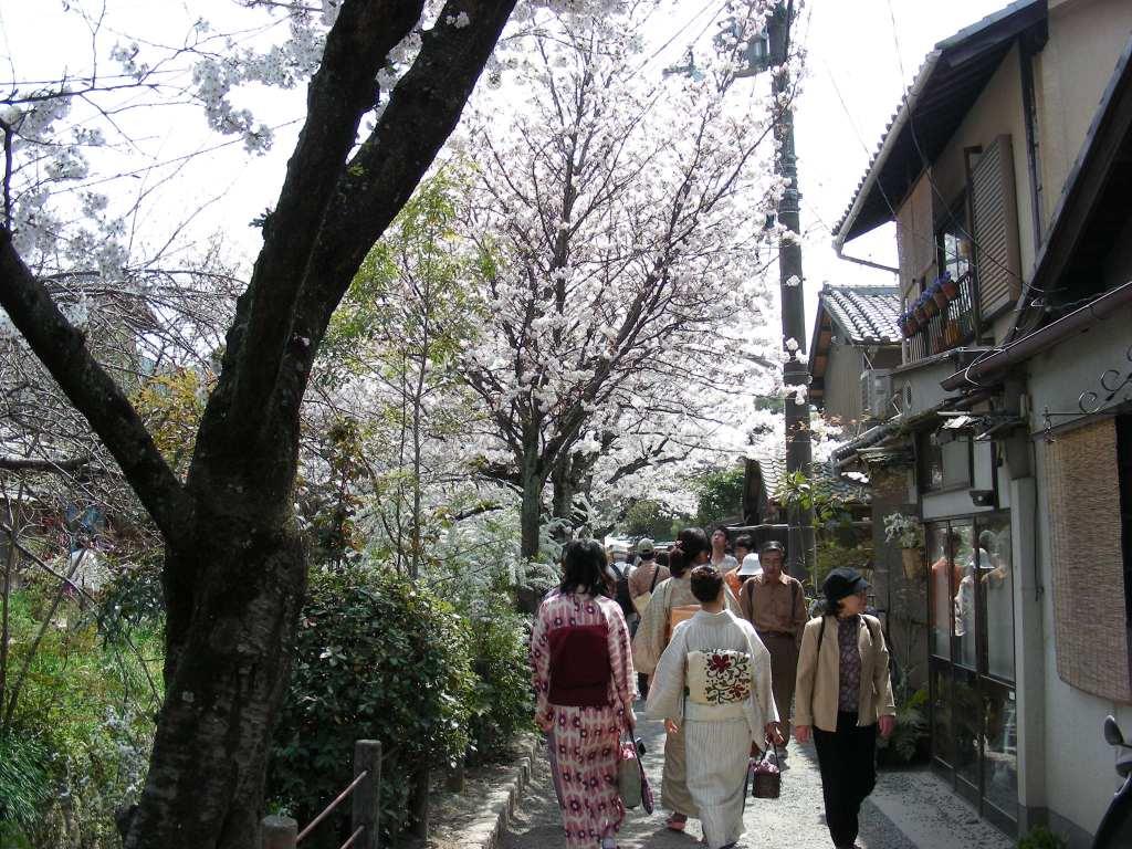 桜・円山、真如、哲学 200