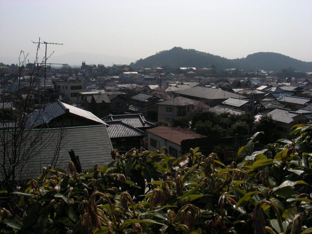 疎水・松ヶ崎・船岡・鳴滝桜 111