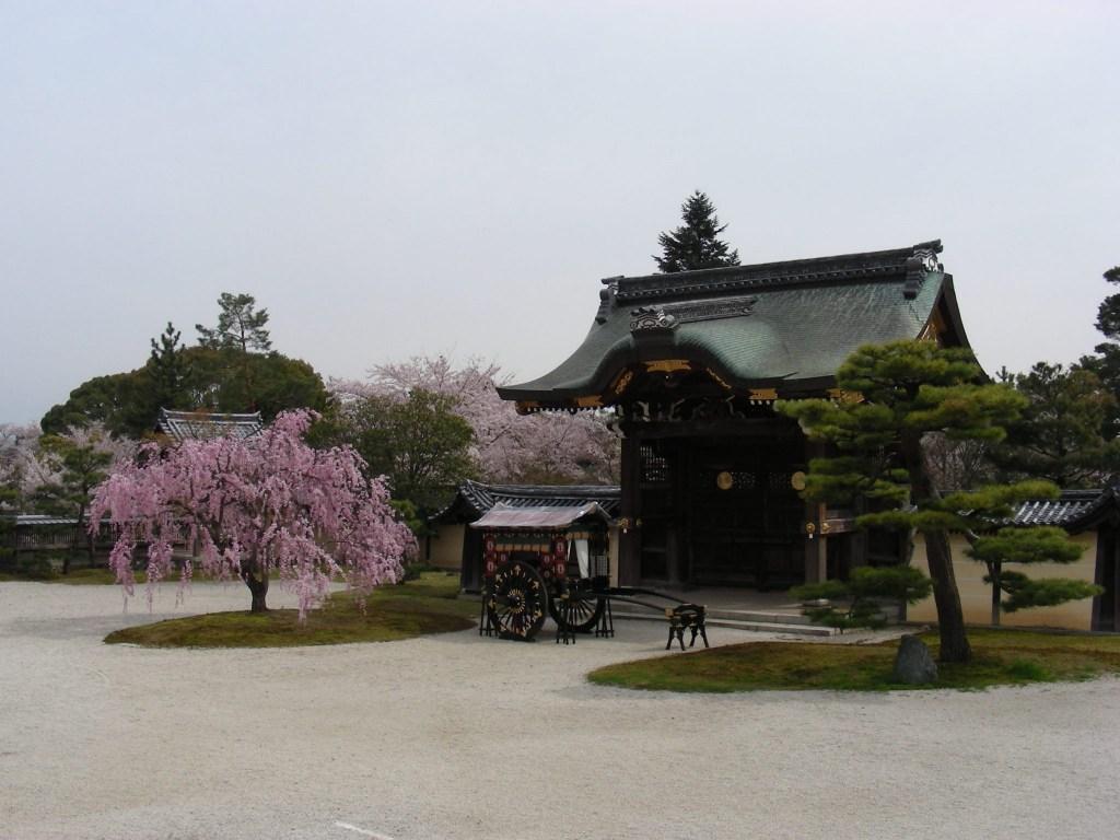 桜大覚寺、二尊院、嵐山 026