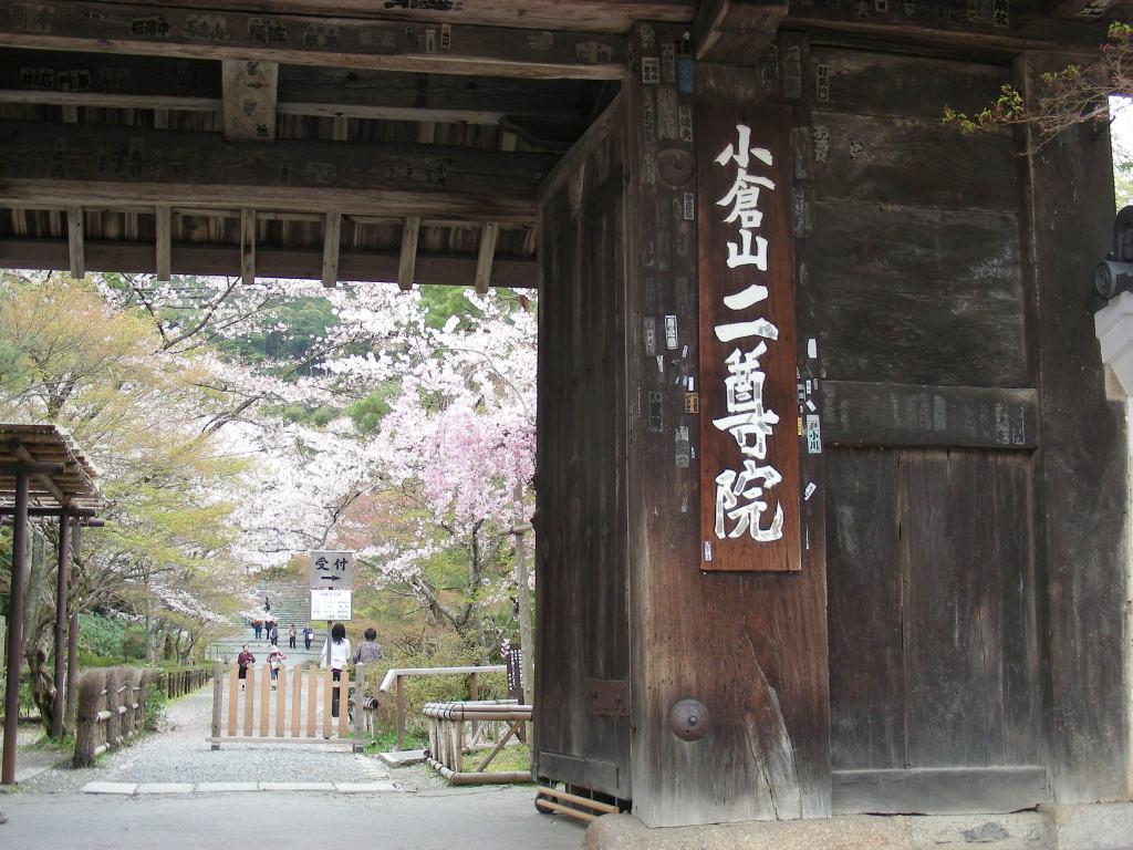 桜大覚寺、二尊院、嵐山 118