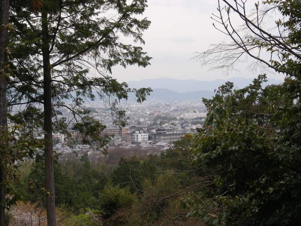 桜大覚寺、二尊院、嵐山 147