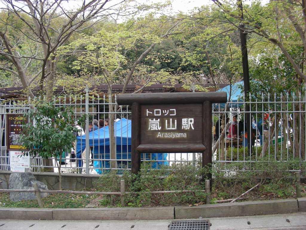 桜大覚寺、二尊院、嵐山 176