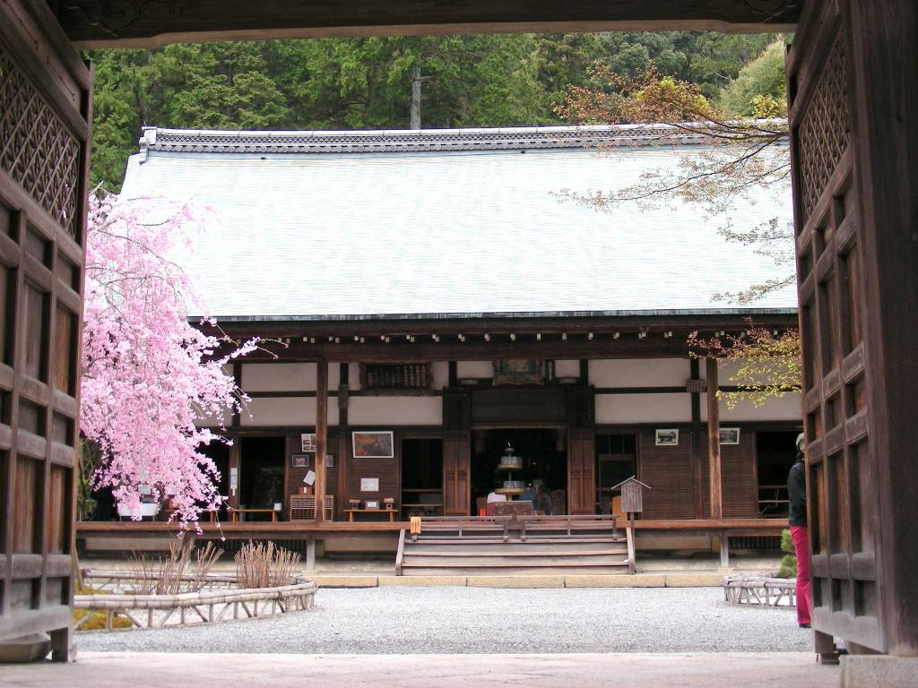 桜大覚寺、二尊院、嵐山 157