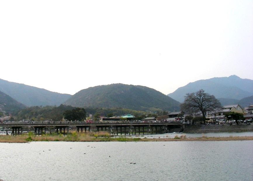 桜大覚寺、二尊院、嵐山 205