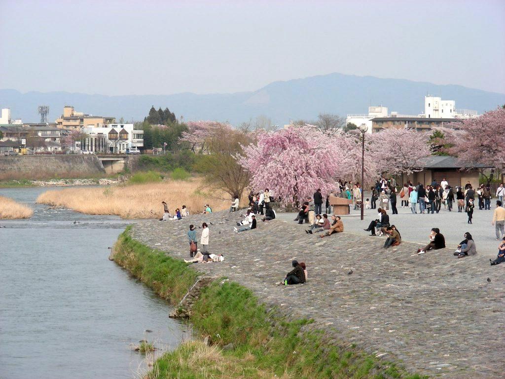 桜大覚寺、二尊院、嵐山 218