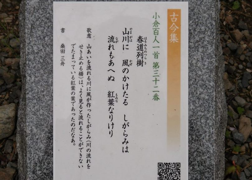 桜大覚寺、二尊院、嵐山 185