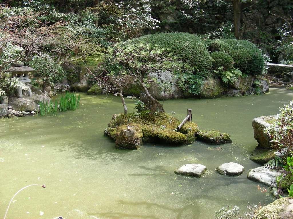 桜・円山、真如、哲学 083