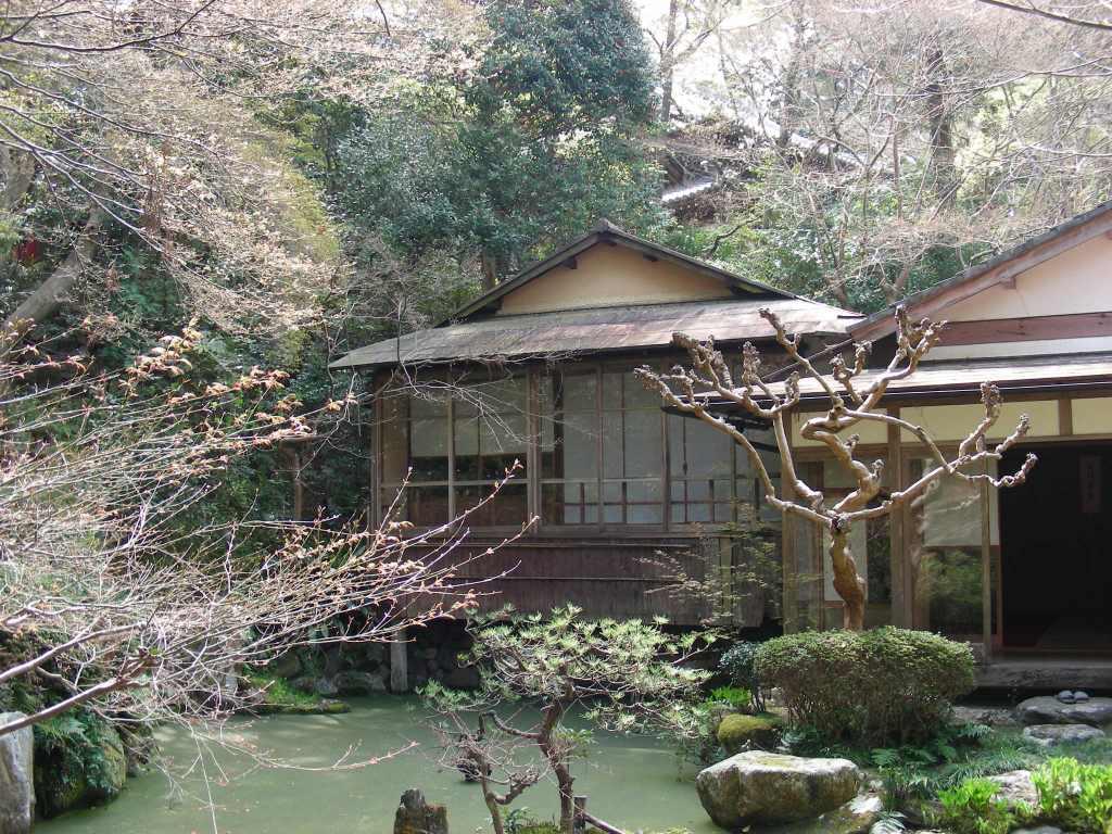 桜・円山、真如、哲学 085