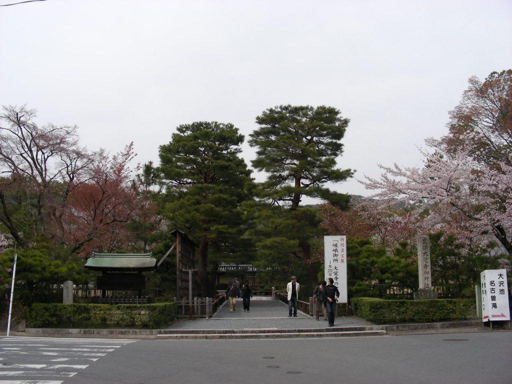 桜大覚寺、二尊院、嵐山 016
