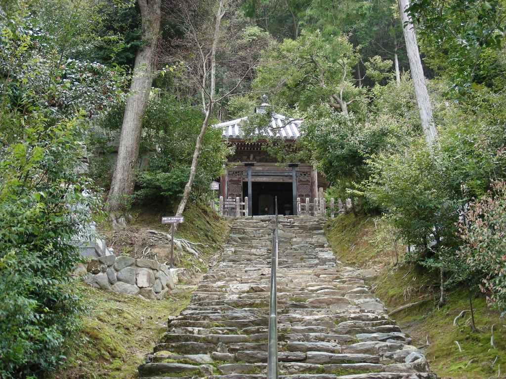 桜大覚寺、二尊院、嵐山 142