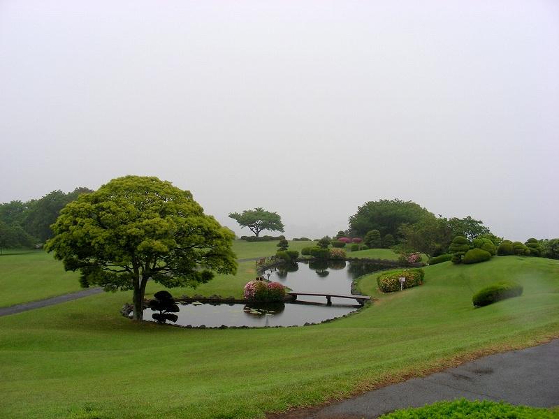 静岡 289