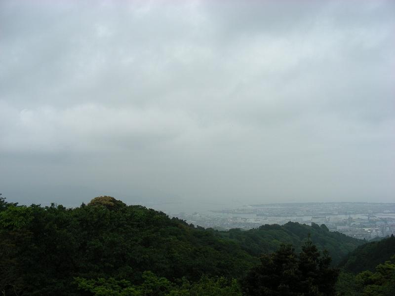 静岡 236