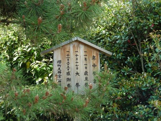 桃山 156