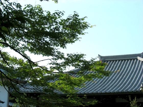 桃山 168