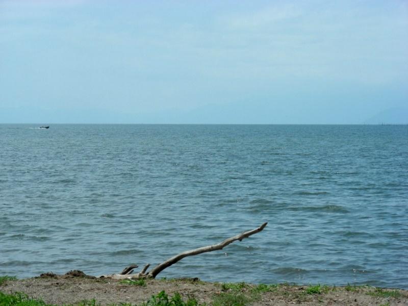 琵琶湖サイクリング 004
