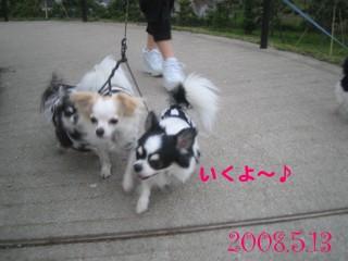 フォトライブラリ - 2031