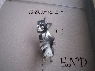 フォトライブラリ - 2211