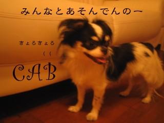 フォトライブラリ - 2347