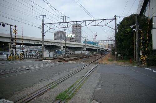 2007TMS_IMGP3052.jpg