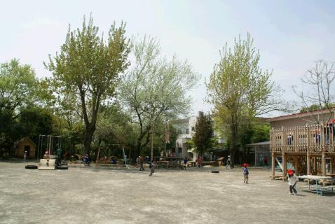 DSC00843園庭1